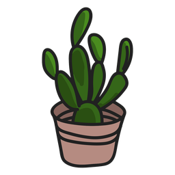 Succulents green plant illustration