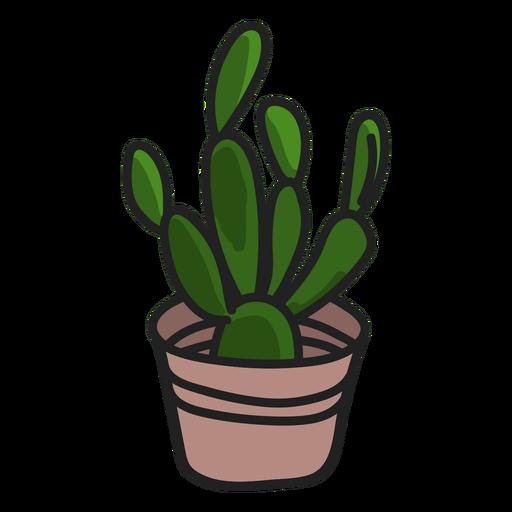 Ilustración de planta verde suculentas Transparent PNG