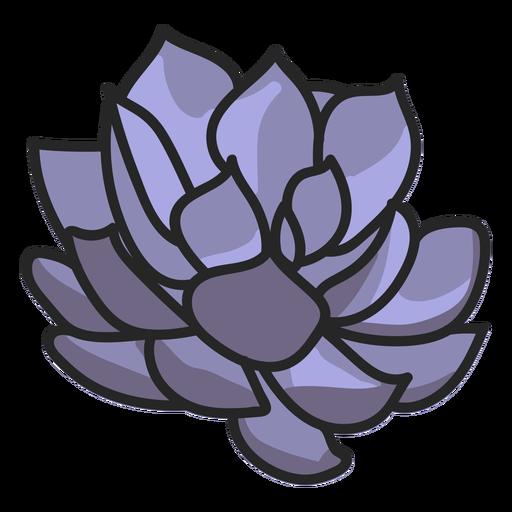 Succulents stroke illustration Transparent PNG
