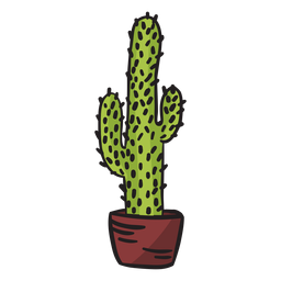 Tall cactus mexico illustration