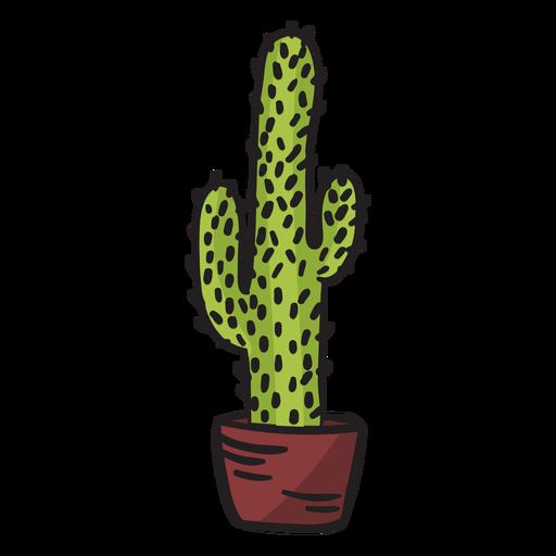 Tall cactus mexico illustration