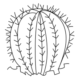 Dorn Kaktus Abbildung