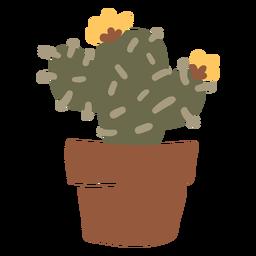Cacto em um plantador de maconha