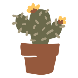 Cactus in a pot planter