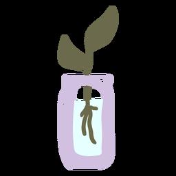 Pflanze mit Wurzeln auf Wasser