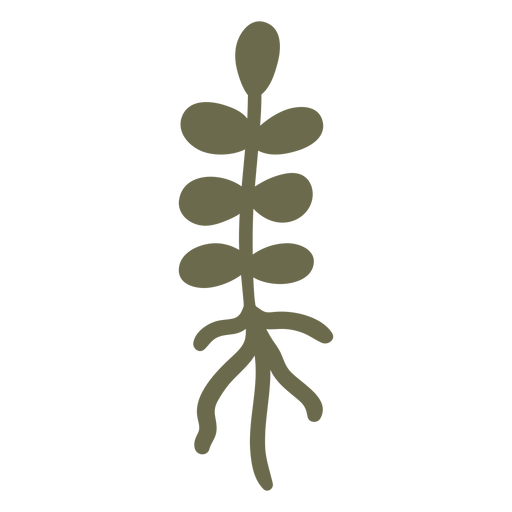 Simple plant with roots Transparent PNG