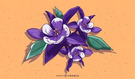 Projeto da ilustração da flor de Aquilegia