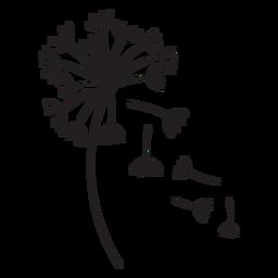 fallende Blumenblätter des Löwenzahns streichen