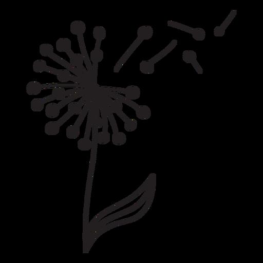 dandelion stroke petals