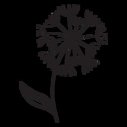 petals of dandelions stroke