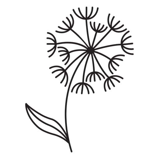 petals of dandelions stroke Transparent PNG