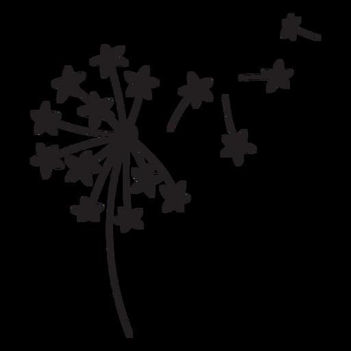 star-shaped petals dandelion stroke