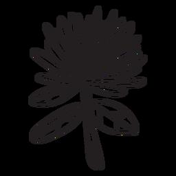 Flor de trazo de flor