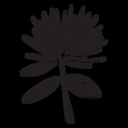 Flor negro