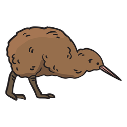 Kiwi bird hand drawn