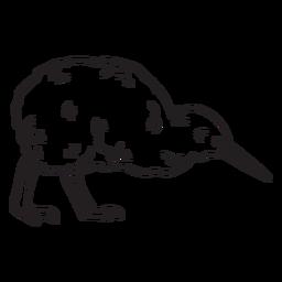 Golpe de pájaro kiwi