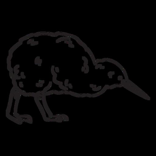 Golpe de pájaro kiwi Transparent PNG