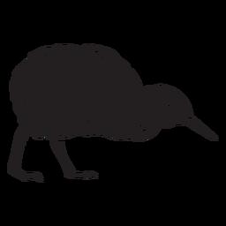 Kiwi pájaro negro