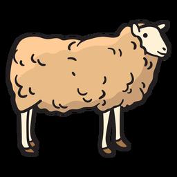Sheep hand drawn