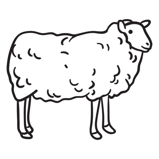 Sheep stroke Transparent PNG