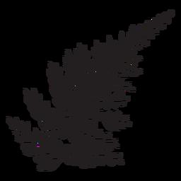 Helecho plateado negro