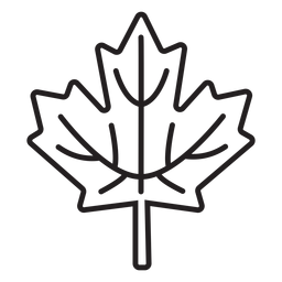 simple maple leaf stroke