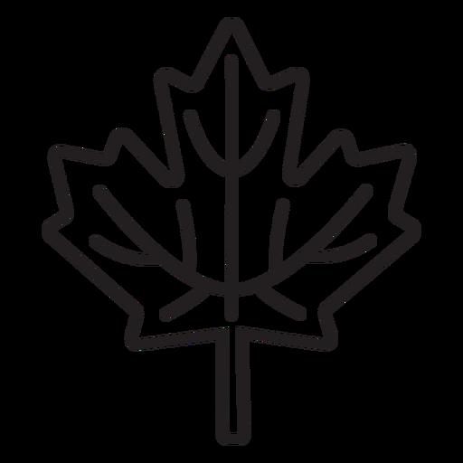 simple maple leaf stroke Transparent PNG