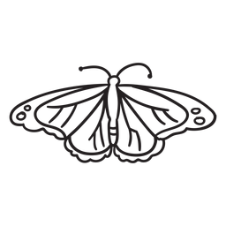 Draufsicht des Schmetterlingsanschlags
