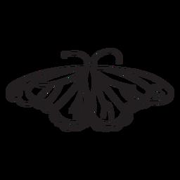 Vista superior do traçado de borboleta