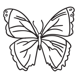 Trazo mariposa simple