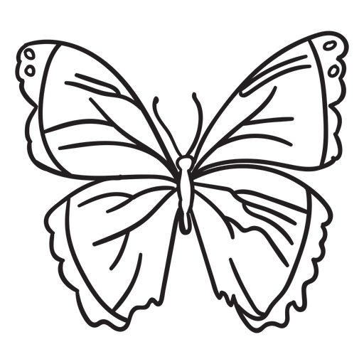 Stroke butterfly simple Transparent PNG