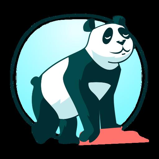 Stylish all fours cute panda