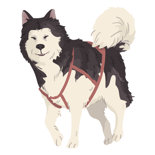 Cute Wolf Illustration Transparent Png Svg Vector File