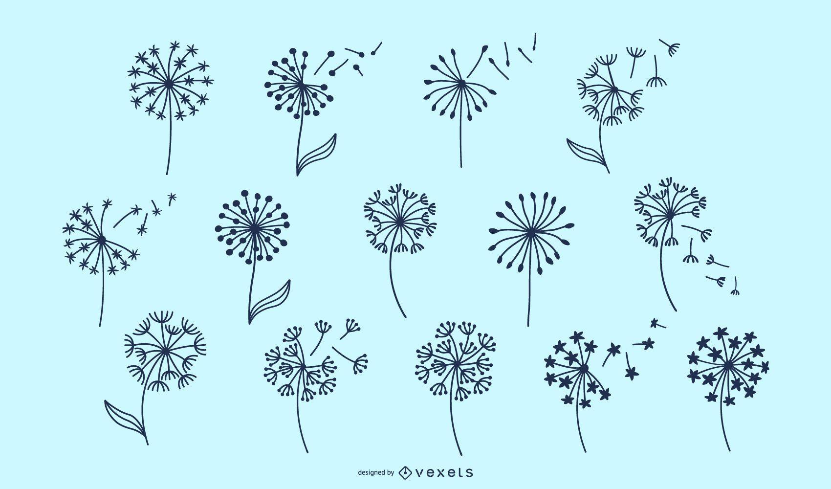 Dandelion flowers collection
