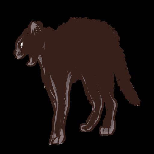 Gato preto assustado Transparent PNG