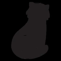 Gato bonito sentado