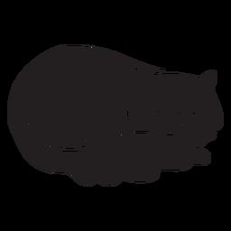 Nette schlafende Katze