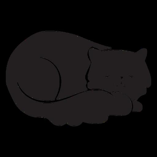 Gato fofo dormindo Transparent PNG
