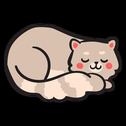 Lindo gatito de trazo de gato