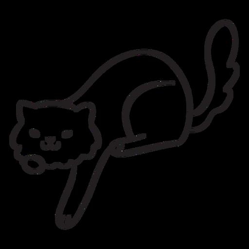 Lindo trazo de gato jugando Transparent PNG
