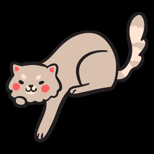 Lindo trazo de gato jugando kitty Transparent PNG