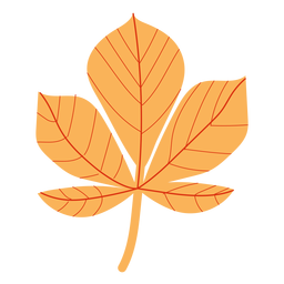 Flat autumn maple