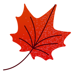 Flat autumn red maple leaf