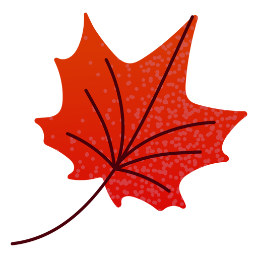 Flat autumn red maple leaf Transparent PNG