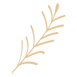 Imagen plana de trigo de panadería