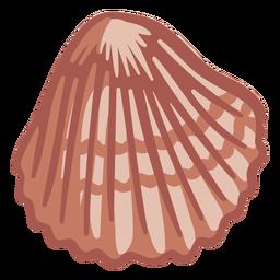 Hand gezeichnete Muschel