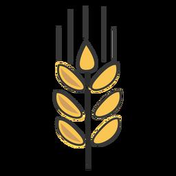 Curso de trigo de padaria