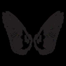 Esquema de alas de ángel pájaro