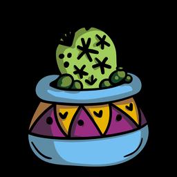 Cactus plant pot