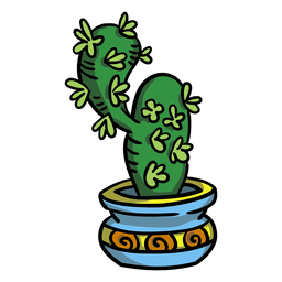 Cactus succulent plant pot